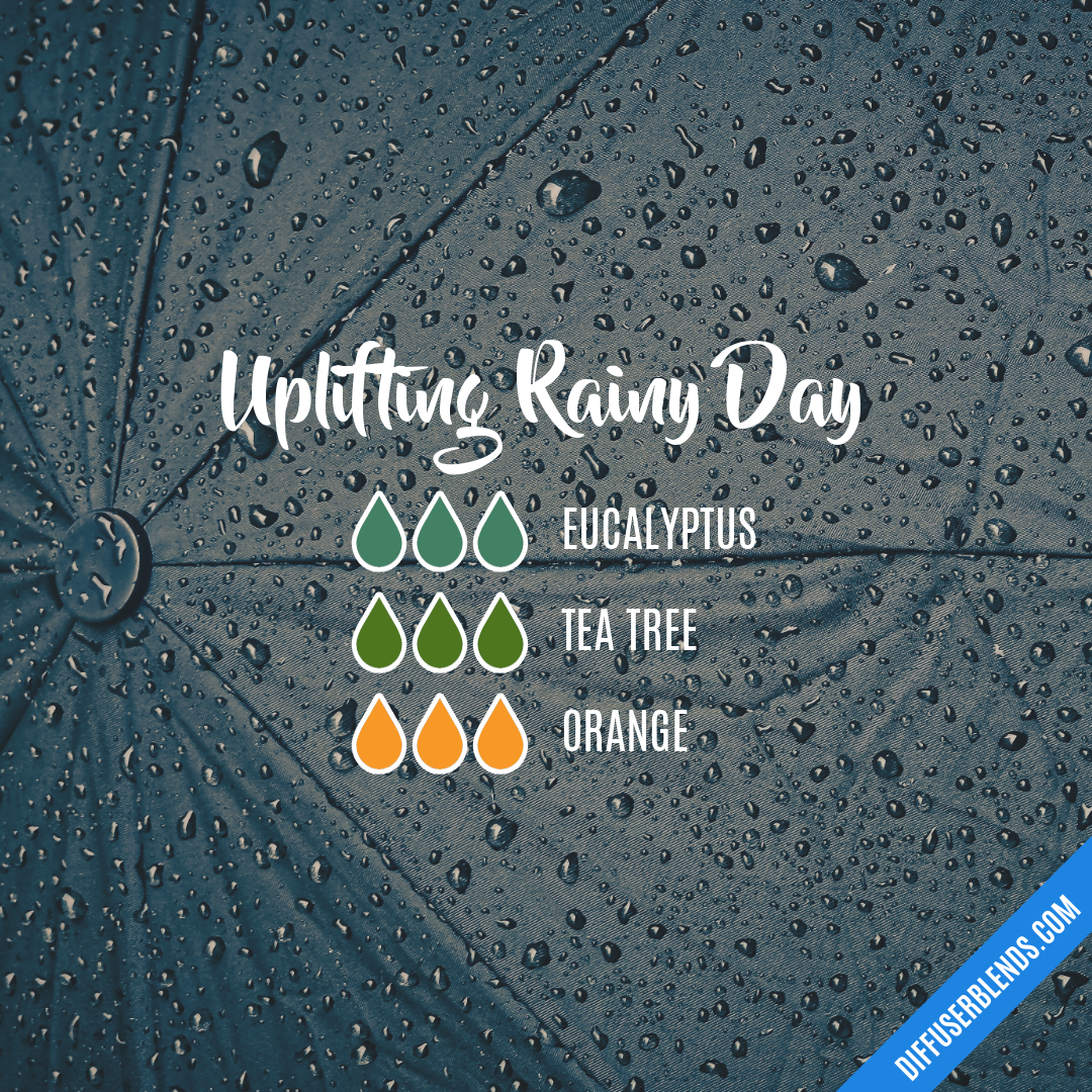 Uplifting Rainy Day Diffuserblends Com