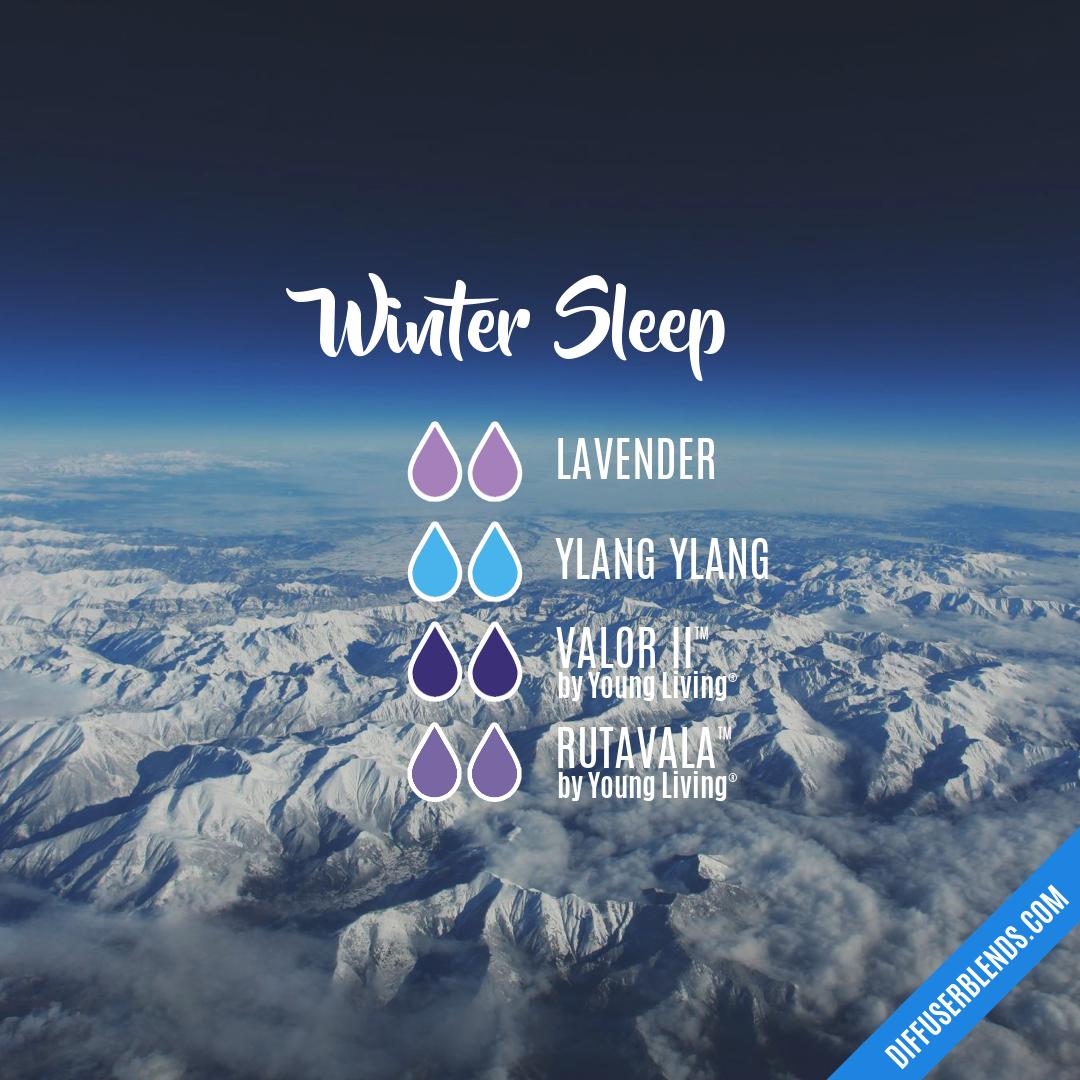 Winter Sleep Diffuserblends Com