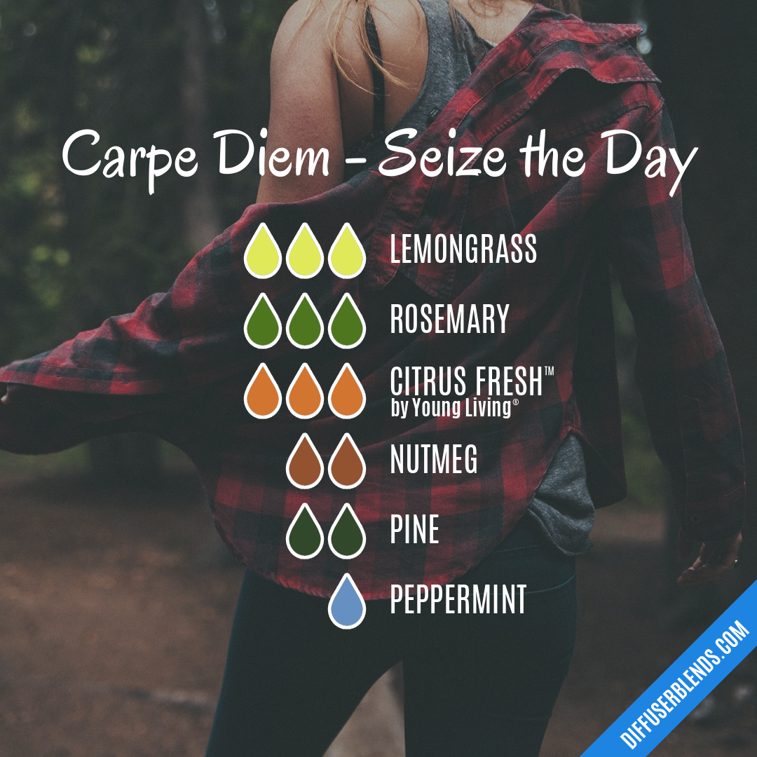Carpe Diem - Seize the Day — Essential Oil Diffuser Blend